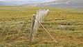 Deer Fence (An Sgòr Dubh) on Mar Lodge Estate (29JUL17) (14).jpg