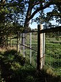 Deer fence, Powderham Deer Park - geograph.org.uk - 1571105.jpg