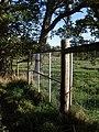 Deer fence, Powderham Deer Park - geograph.org.uk - 1571105.jpg