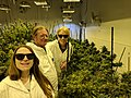 Denver cannabis tours.jpg
