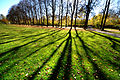 Der Bad Mergentheimer Kurpark im Herbst. 08.jpg