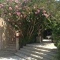 Des escaliers au Mas de Chastelas.jpg