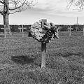 Deutscher Soldatenfriedhof Steenwerck-16.JPG