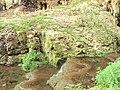 Devetashka cave 015.jpg