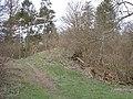 Devil's ditch - geograph.org.uk - 108547.jpg