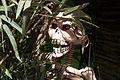 Dia de muertos In the Jungle.jpg