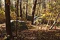 Diabase boulders Gifford Pinchot State Park.jpg