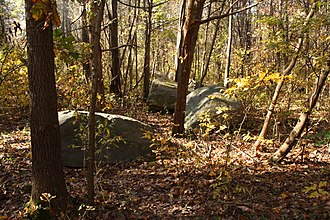 Gifford Pinchot State Park - Diabase boulders are common around the park