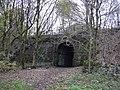 Disused Rail Bridge - geograph.org.uk - 1036453.jpg