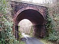 Disused Railway Bridge - geograph.org.uk - 287047.jpg