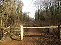 Disused Railway looking east, Ash, Surrey - geograph.org.uk - 115191.jpg
