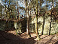 Disused Sandstone Quarry in Ruff Wood - geograph.org.uk - 131063.jpg