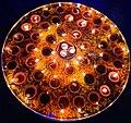 Diwali Pooja Thali with Diya Decoration.jpg