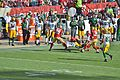 Donte Whitner tackles Randall Cobb in 2013.jpg