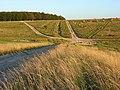 Downland, Chitterne - geograph.org.uk - 524935.jpg