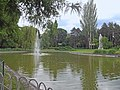 Dunavski park, spomenik prirode, Novi Sad 5.jpg