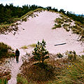 Dune Gotska Sandon.jpg