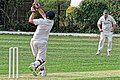 Dunmow CC v Brockley CC at Great Dunmow, Essex, England 29.jpg