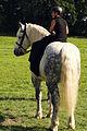 Duo de cavalières mondial du cheval percheron 2011Cl J Weber03 (23455236564).jpg