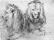Albrecht Dürer, Lions sketch. Circa 1520.