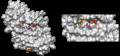 E. coli guanosine kinase.png