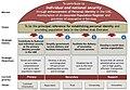 EIDA strategy.jpg