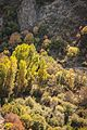 ES0000166-Barranco del Rio Dulce DSC3245.jpg
