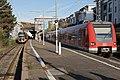 ET2010-Hoechst-0011.jpg