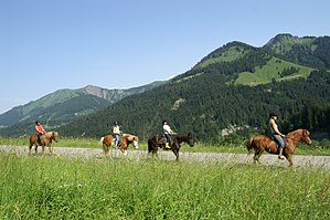 Trail riding - Trail riding in Dornbirn, Austria, It is often a group activity.