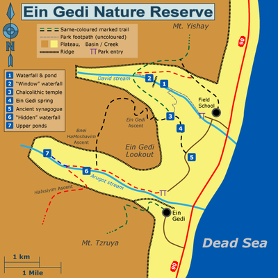 Ein Gedi Travel Guide At Wikivoyage