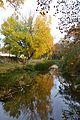 El riu Palància a la tardor, Sogorb.JPG