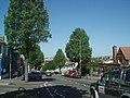 Elm Grove - geograph.org.uk - 1327786.jpg