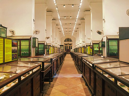 Empty corridors.jpg