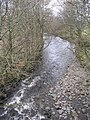 Endrick Water - geograph.org.uk - 1198183.jpg