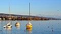 Enge - Hafen - Seefeldquai-Zürichhorn - Zimmerberg - Hafen Riesbach 2014-03-17 17-35-24.JPG