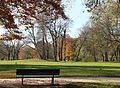 Englischer Garten Herbst-9.jpg