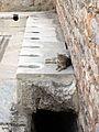 Ephesus Curetes Street Latrinae Cat.jpg