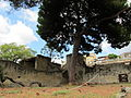 Ercolano 2012 (8019694874).jpg