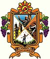Official seal of Dolores Hidalgo