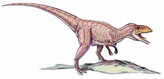 Torvosaurus - Image: Eustrept 1DB1 (Flipped)