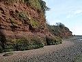 Exe estuary cliffs, near Lympstone - geograph.org.uk - 1028901.jpg