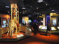 Exhibit - National Geographic Museum - DSC05046.JPG