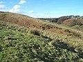 Exmoor , Moorland - geograph.org.uk - 1136456.jpg