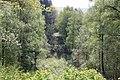 Explosionskrater Prüm 2014.jpg