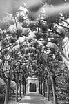 exterieur berceau van leilinden met zicht op het portaal van de kerk - willemstad - 20324704 - rce