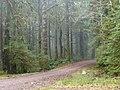 FR 22 - panoramio.jpg
