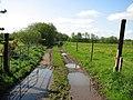 Farm laneway - geograph.org.uk - 1299122.jpg