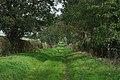 Farm track from Keyworth Lane - geograph.org.uk - 262093.jpg