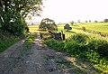 Farm track near Pilsley - geograph.org.uk - 580718.jpg