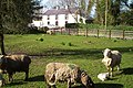 Farmhouse - geograph.org.uk - 1219970.jpg
